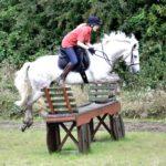 horse jump event