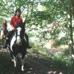 horse rider path